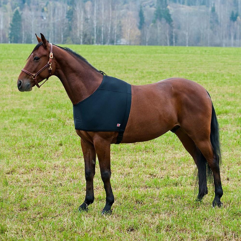 Pony Decken: Schulterschutz Für Regendecke, Decke Für Pferde Schwarz